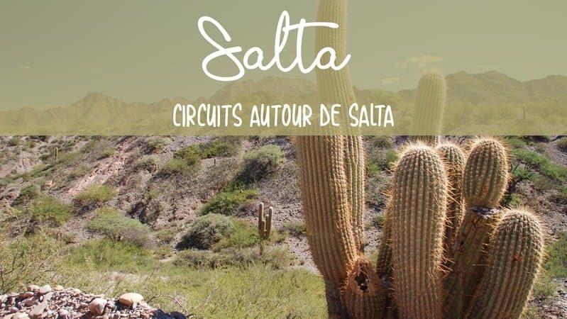 Circuits autour de Salta